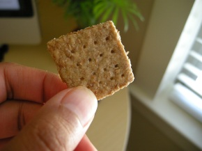 making my own | wheat crackers