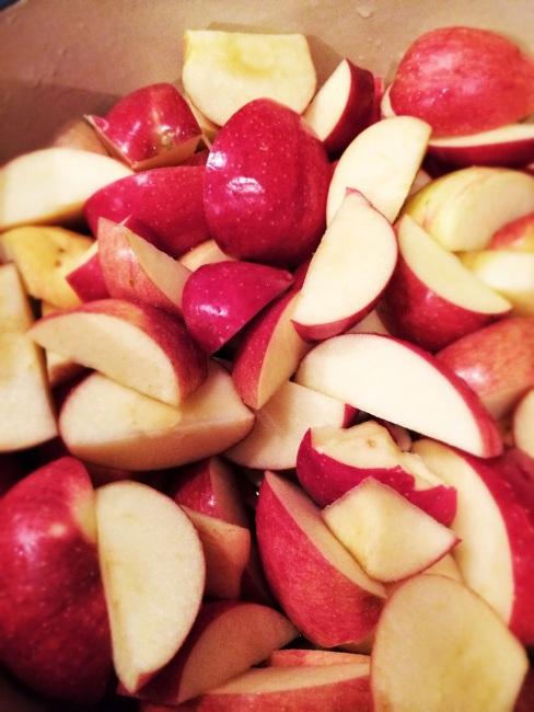 vegetarian meal plan (with apples) | aneelee.wordpress.com