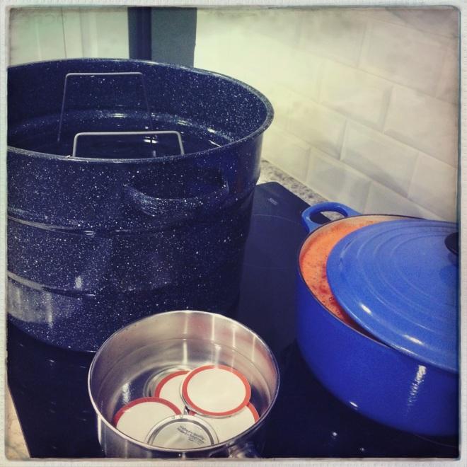 processing tomatoes | aneelee.wordpress.com