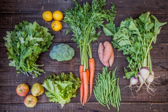 veggie meal plan - 11/25/14 | aneelee.com
