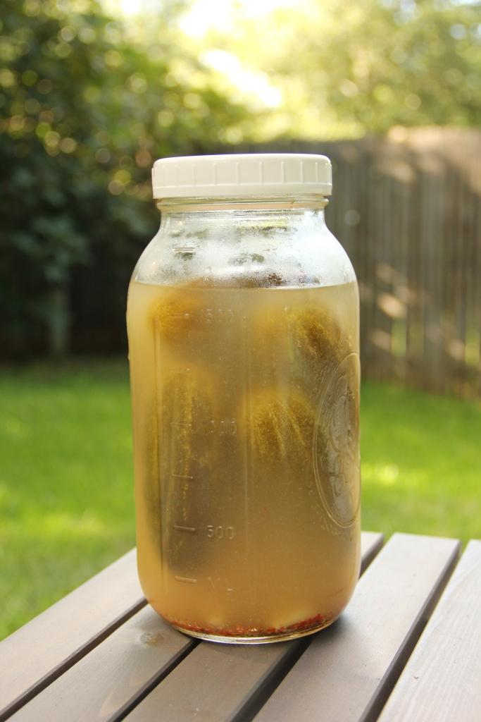 vinegar pickles no more | aneelee.com