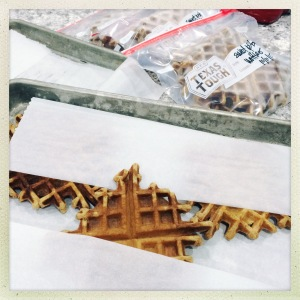 waffle freezing | aneelee.com